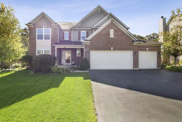 941 Sterling Heights Drive, Antioch, IL 60002 (MLS #10544673) :: Suburban Life Realty