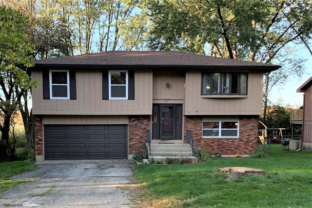 217 Plum Street, Lake In The Hills, IL 60156 (MLS #10544705) :: Suburban Life Realty
