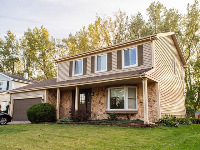 1206 Lockwood Drive, Buffalo Grove, IL 60089 (MLS #10544717) :: Baz Realty Network   Keller Williams Elite