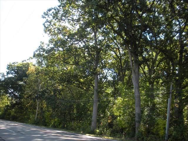 0 Camp Lake Road, Salem, WI 53168 (MLS #10545052) :: Suburban Life Realty