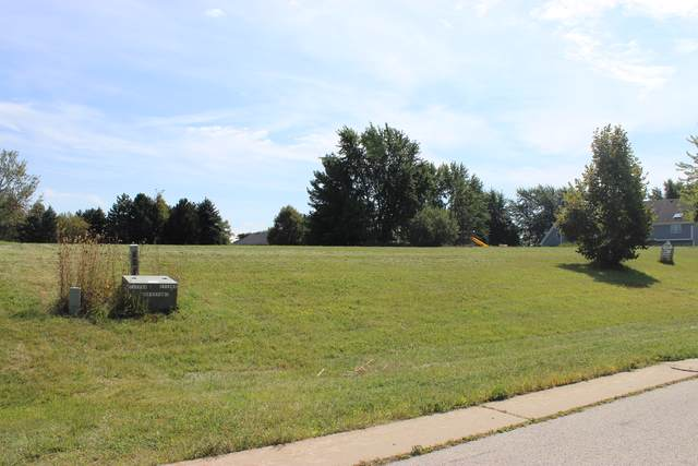 178 Meadowlark Drive, Hawthorn Woods, IL 60047 (MLS #10545181) :: Suburban Life Realty