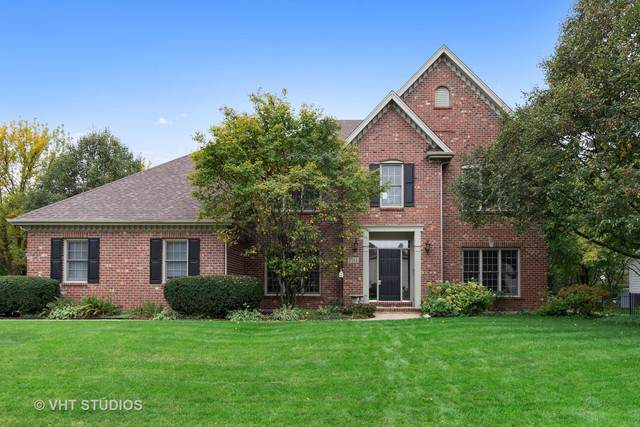 704 Mesa Drive, Naperville, IL 60565 (MLS #10545189) :: Baz Realty Network | Keller Williams Elite