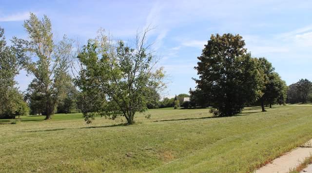 79 Falcon Drive, Hawthorn Woods, IL 60047 (MLS #10545193) :: Suburban Life Realty