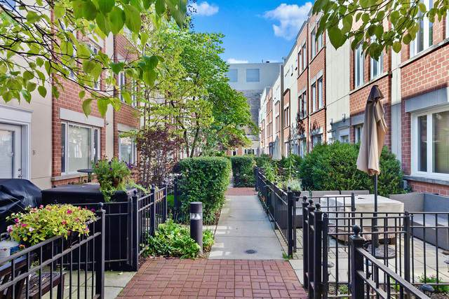 3910 N Fremont Street G, Chicago, IL 60613 (MLS #10545237) :: Property Consultants Realty