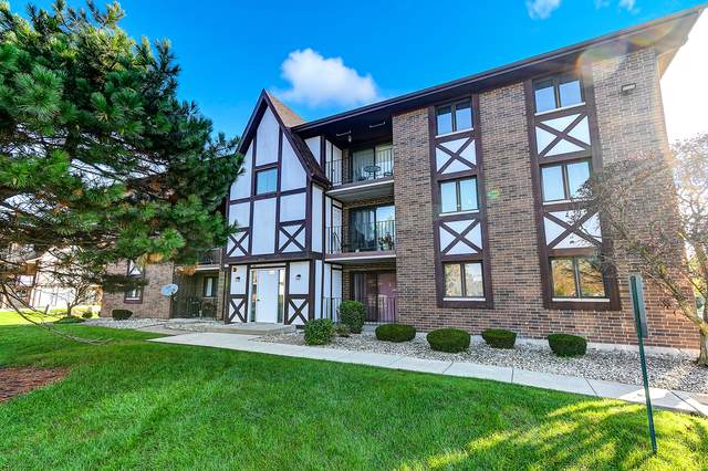 10531 S Roberts Road 3A, Palos Hills, IL 60465 (MLS #10545330) :: Century 21 Affiliated