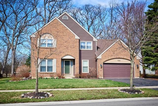 731 Red Oak Drive, Bartlett, IL 60103 (MLS #10545416) :: Suburban Life Realty