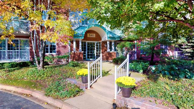 541 N Hough Street #101, Barrington, IL 60010 (MLS #10545646) :: Ani Real Estate