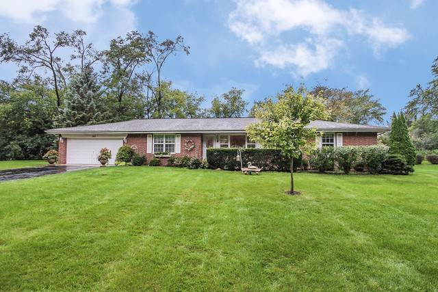102 Patricia Lane, Prospect Heights, IL 60070 (MLS #10546094) :: Berkshire Hathaway HomeServices Snyder Real Estate