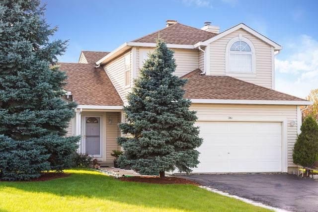 341 Sundance Drive, Bartlett, IL 60103 (MLS #10546331) :: Suburban Life Realty