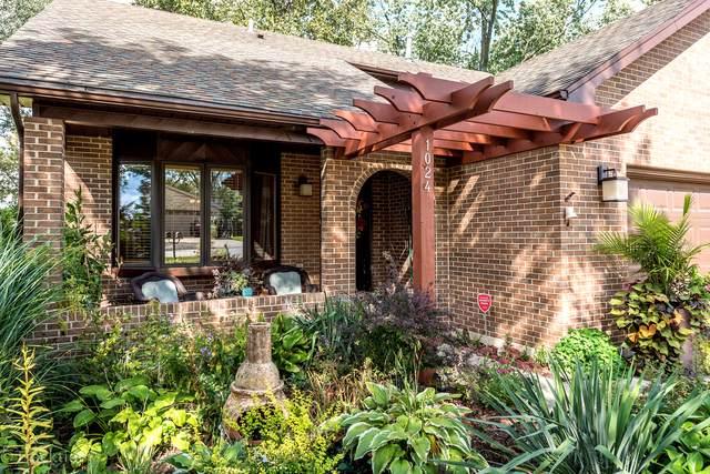 1024 Norfolk Street, Downers Grove, IL 60516 (MLS #10546407) :: John Lyons Real Estate