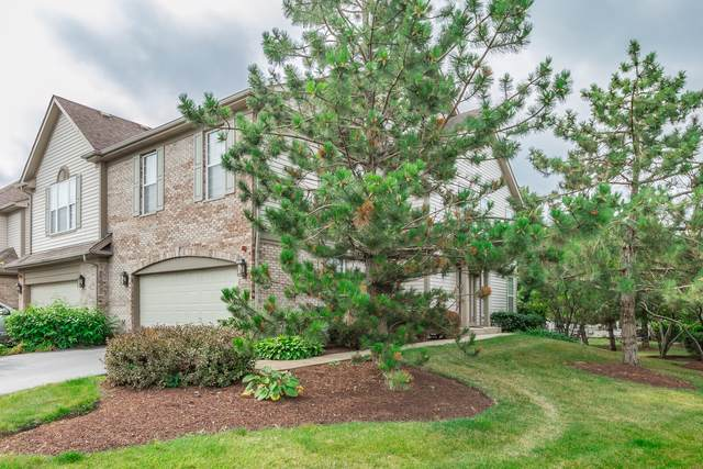 5533 Mcdonough Road #5533, Hoffman Estates, IL 60192 (MLS #10546473) :: Property Consultants Realty