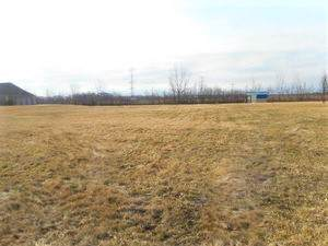 1099 Country Court, Crete, IL 60417 (MLS #10546579) :: Property Consultants Realty