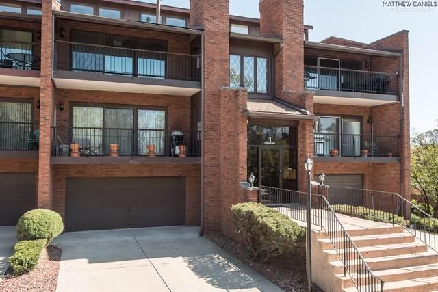1 Cinnamon Creek Drive 1N, Palos Hills, IL 60465 (MLS #10546583) :: Century 21 Affiliated