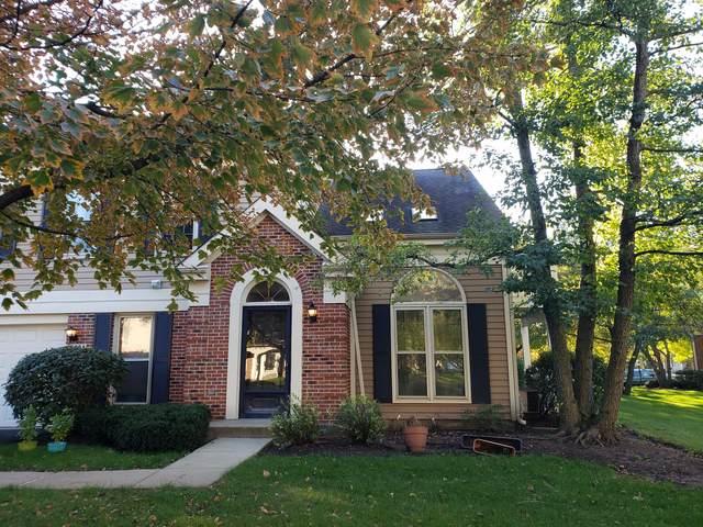 2529 E Hunter Drive A, Arlington Heights, IL 60004 (MLS #10547076) :: Helen Oliveri Real Estate