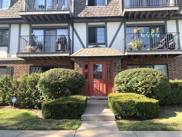 102 Steeple Drive D, Buffalo Grove, IL 60089 (MLS #10547116) :: Helen Oliveri Real Estate
