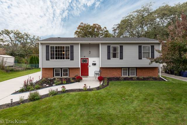 3113 Everglade Avenue, Woodridge, IL 60517 (MLS #10547121) :: Ryan Dallas Real Estate