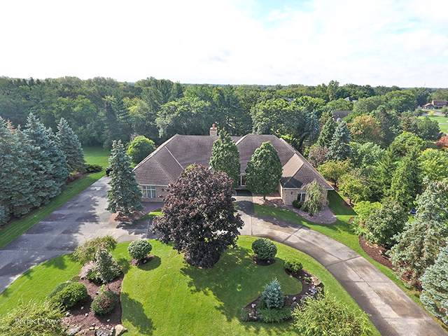 20359 W Buckthorn Court, Mundelein, IL 60060 (MLS #10547228) :: Helen Oliveri Real Estate