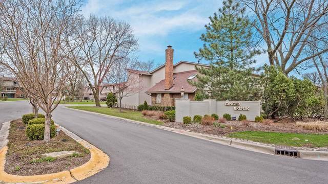 19W235 Gingerbrook Drive #235, Oak Brook, IL 60523 (MLS #10547244) :: Lewke Partners