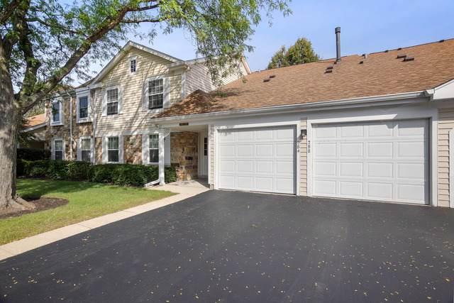 286 Appletree Court #286, Buffalo Grove, IL 60089 (MLS #10547255) :: Helen Oliveri Real Estate