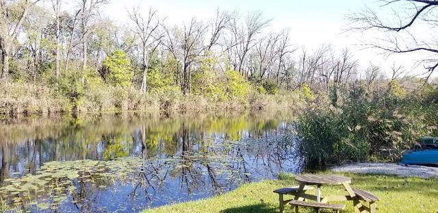 32733 Nikki Lane, Wilmington, IL 60481 (MLS #10547349) :: Berkshire Hathaway HomeServices Snyder Real Estate