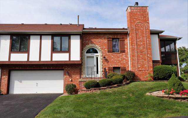 17825 Cameron Parkway, Orland Park, IL 60467 (MLS #10547657) :: Angela Walker Homes Real Estate Group