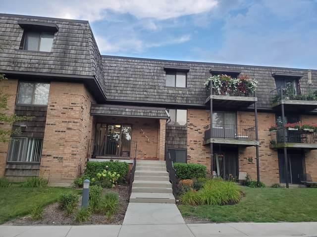 9 Oak Creek Drive #3903, Buffalo Grove, IL 60089 (MLS #10547820) :: Helen Oliveri Real Estate