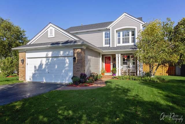 674 Sycamore Lane, Grayslake, IL 60030 (MLS #10547912) :: Baz Realty Network | Keller Williams Elite