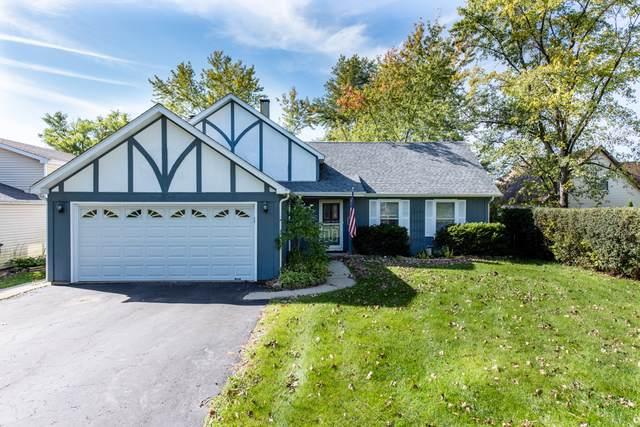 788 N Beck Road, Lindenhurst, IL 60046 (MLS #10547958) :: Angela Walker Homes Real Estate Group