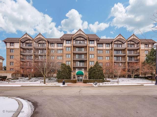 15 S Pine Street 304A, Mount Prospect, IL 60056 (MLS #10548002) :: Helen Oliveri Real Estate