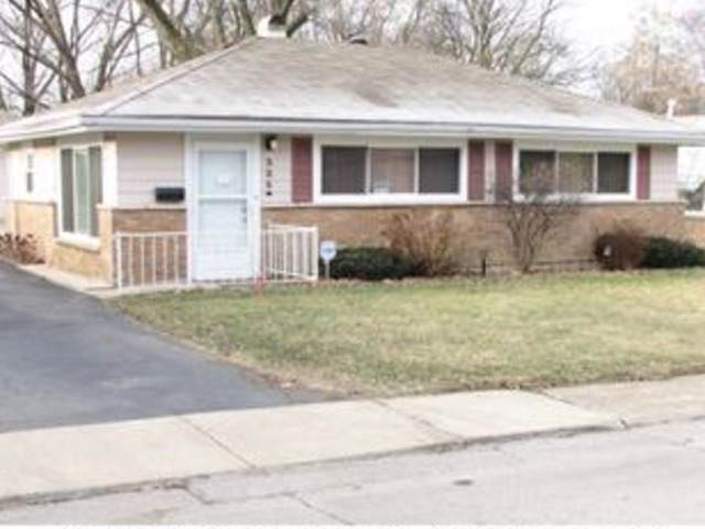 325 Mohawk Street, Park Forest, IL 60466 (MLS #10548080) :: Littlefield Group