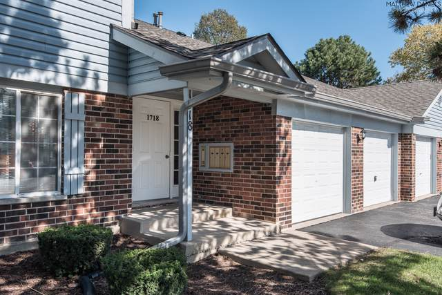 1718 Chesapeake Lane #6, Schaumburg, IL 60193 (MLS #10548081) :: LIV Real Estate Partners