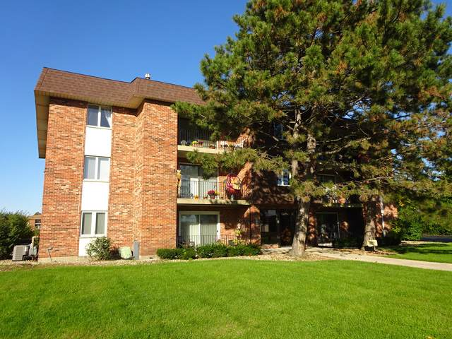 13950 S 91st Avenue 1SW, Orland Park, IL 60462 (MLS #10548095) :: Angela Walker Homes Real Estate Group