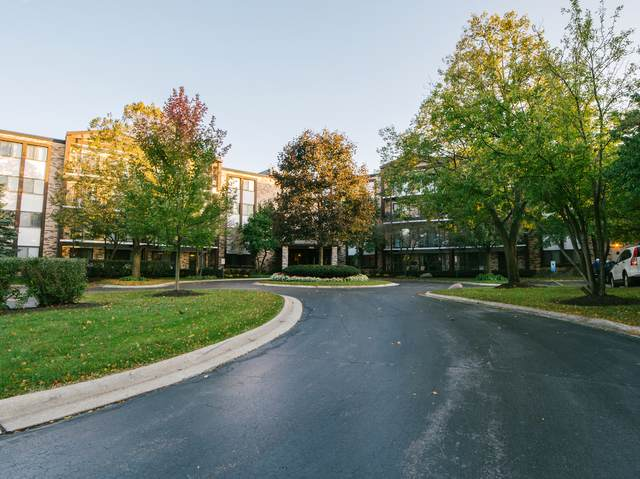 1400 N Yarmouth Place #314, Mount Prospect, IL 60056 (MLS #10548100) :: Helen Oliveri Real Estate