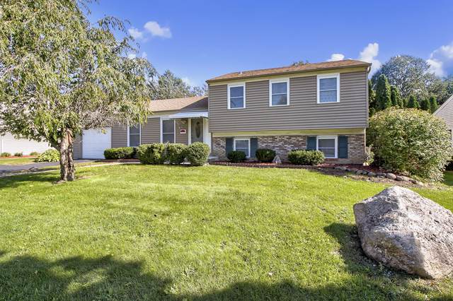 19 Ellington Drive, Schaumburg, IL 60194 (MLS #10548112) :: LIV Real Estate Partners