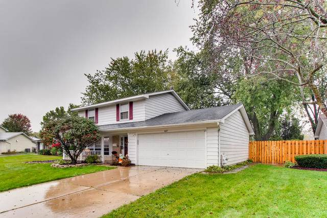 8217 N Carrolton Court, Hanover Park, IL 60133 (MLS #10548152) :: Ani Real Estate