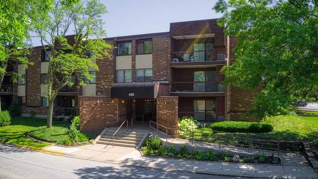 460 Raintree Court 3N, Glen Ellyn, IL 60137 (MLS #10548195) :: Baz Realty Network   Keller Williams Elite