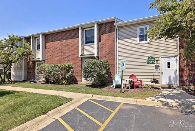 1376 Wyndham Circle #105, Palatine, IL 60067 (MLS #10548234) :: Helen Oliveri Real Estate