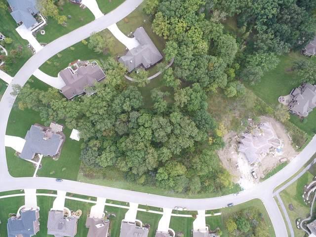 13925 Stonebridge Woods Crossing, Homer Glen, IL 60491 (MLS #10548246) :: Angela Walker Homes Real Estate Group