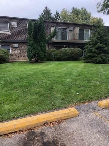 879 Trace Drive #204, Buffalo Grove, IL 60089 (MLS #10548529) :: Helen Oliveri Real Estate