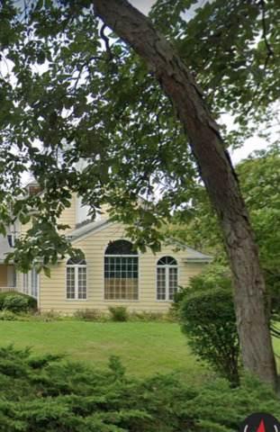 202 Ravine Forest Drive, Lake Bluff, IL 60044 (MLS #10548549) :: The Dena Furlow Team - Keller Williams Realty
