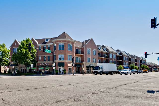 40 E Northwest Highway #309, Mount Prospect, IL 60056 (MLS #10548812) :: Baz Realty Network   Keller Williams Elite