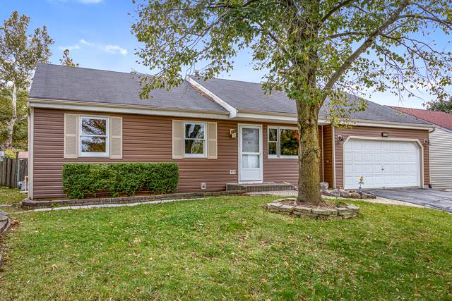 223 Bolz Road, Carpentersville, IL 60110 (MLS #10548831) :: Touchstone Group