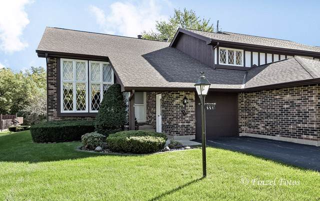 551 Cress Creek Lane, Crystal Lake, IL 60014 (MLS #10548843) :: Suburban Life Realty