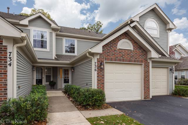 736 Ripple Brook Lane, Elgin, IL 60120 (MLS #10548846) :: Property Consultants Realty
