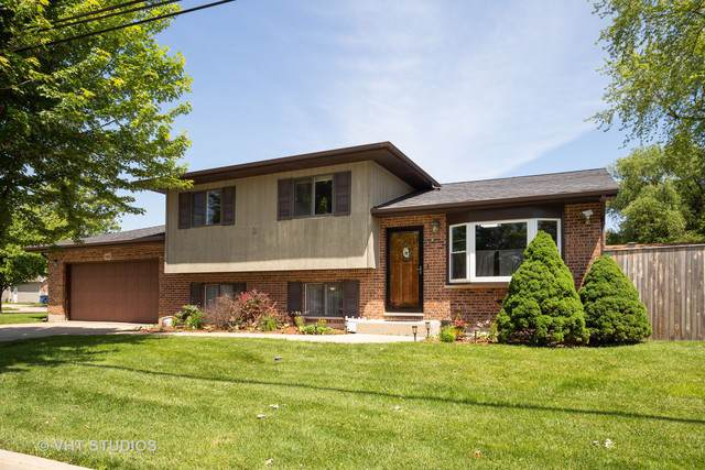 189 Martha Street, Bensenville, IL 60106 (MLS #10548863) :: Baz Realty Network | Keller Williams Elite