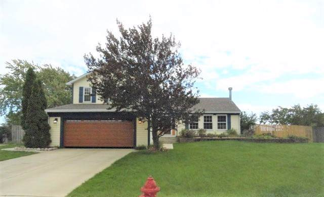 20251 S Rosewood Court, Frankfort, IL 60423 (MLS #10548868) :: Century 21 Affiliated