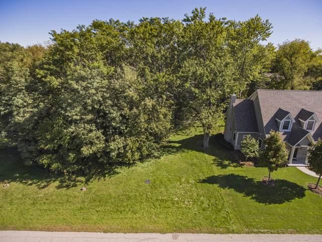 8794 Shade Tree Circle, Lakewood, IL 60014 (MLS #10549411) :: Lewke Partners