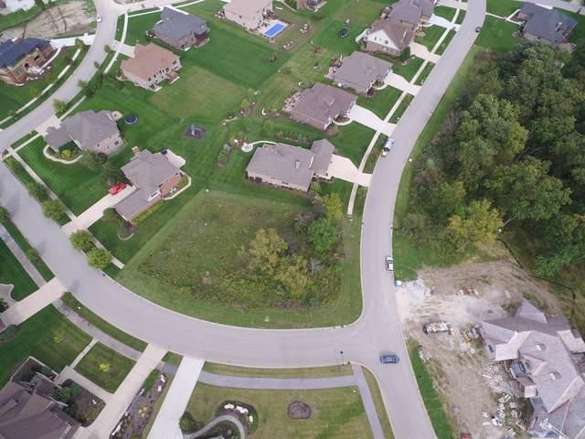 16219 Ohla Farm Way, Homer Glen, IL 60491 (MLS #10549460) :: Property Consultants Realty