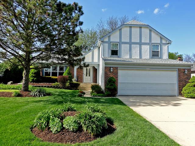 1401 Hyatt Drive, Wheaton, IL 60189 (MLS #10549685) :: The Wexler Group at Keller Williams Preferred Realty