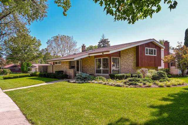 419 N Yale Avenue, Villa Park, IL 60181 (MLS #10549739) :: Angela Walker Homes Real Estate Group